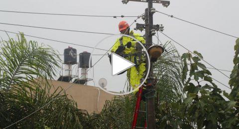 قلنسوة: الطقس يؤدي إلى سقوط شجرة نخيل على عامود كهرباء وانقطاع التيار