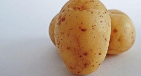 لعشاق البطاطس.. 5 معلومات