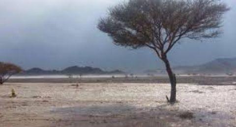 حالة الطقس: رياح شرقية قوية اليوم وأمطار غداً