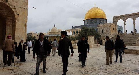 34 مستوطنًا وعنصر مخابرات يقتحمون باحات الأقصى