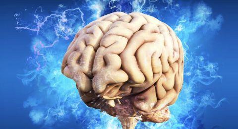 هذه المهنة تسبب تقلص حجم الدماغ!