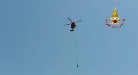 طائرة تحلق ببقرة في مهمة إنقاذ فريدة