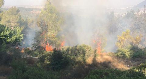 مرة أخرى: اندلاع حريق في حرش دبورية