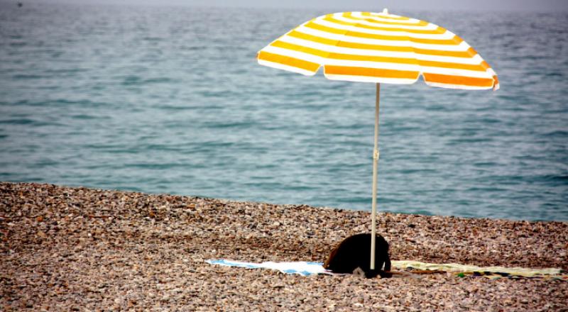 الطقس: اجواء صيفية عادية والحرارة حول معدلها السنوي العام