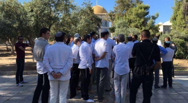 دعوات يهودية لاقتحام جماعي للأقصى يوم العيد بذكرى