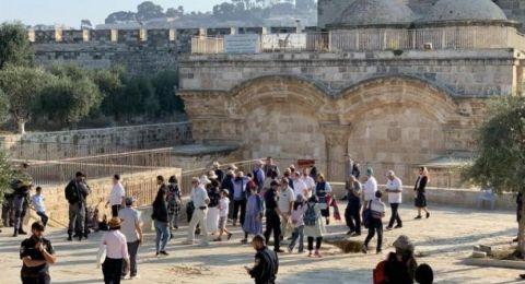 تشديد الخناق على القدس و36 مستوطنًا يقتحمون الأقصى