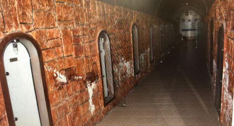 مجهولون يسرقون 12 بندقية من متحف للجيش الاسرائيلي في دالية الكرمل