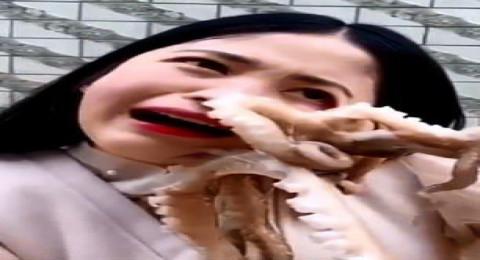 أرادت أكل أخطبوط حي فعلق بوجهها ولم تستطع فكاكه