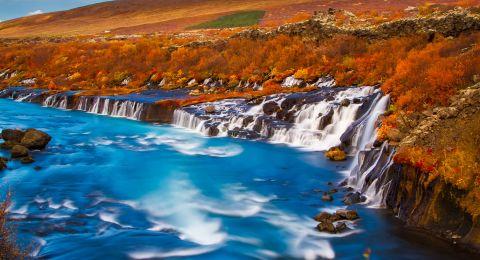 أيسلندا وجهة شهيرة لمشاهدة الحيتان في الصيف