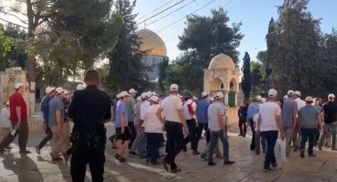 267 مستوطن يقتحمون الاقصى ومحافظ القدس يدعو لشد الرحال اليه