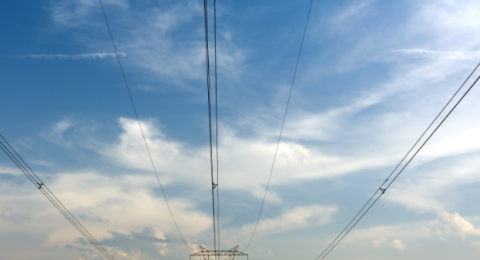 شركة الكهرباء توسّع خدماتها باللغة العربيّة على نطاق واسع