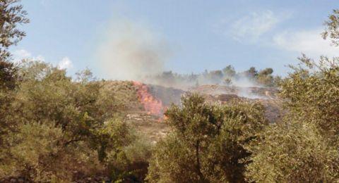 الناصرة: اندلاع حريق هائل في نوف هغليل