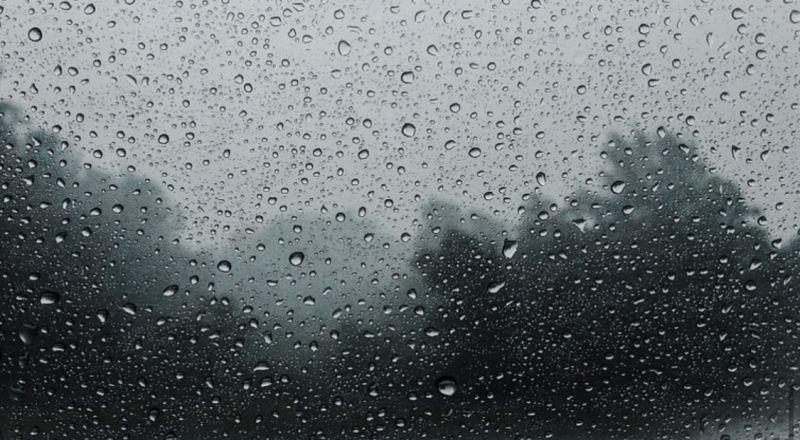 اليكم حالة الطقس المتوقعة