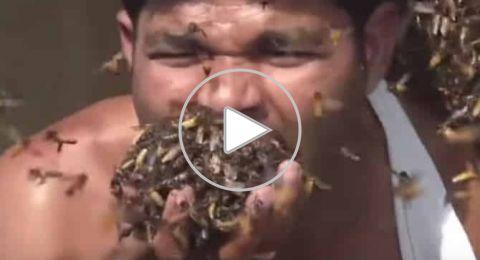هندي يستعرض قوته ضد لسعات النحل ويلتهم المئات
