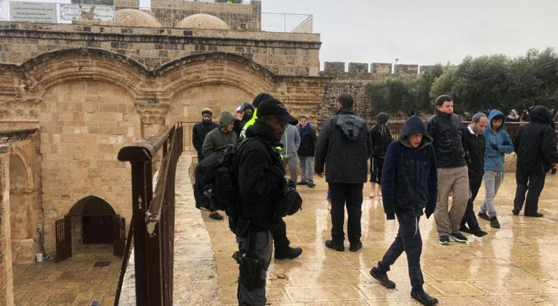 اعتقال حارس في الأقصى و200 مستوطن يقتحمون باحات المسجد