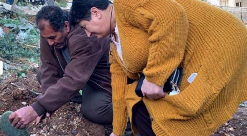 والدا الاسير قسام البرغوثي يغرسان ثمار الصبار مكان منزلهما المهدوم
