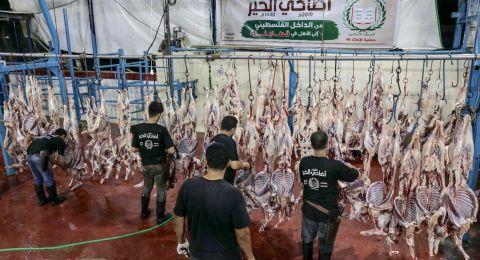 جمعية إغاثة الأيتام والمحتاجين : توزيع 1051 أضحية خلال العيد