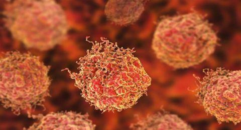 بُشرى سارة.. اكتشاف طريقة جديدة لمنع الوفاة بسبب السرطان