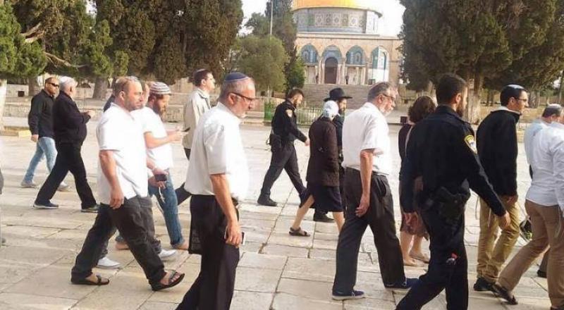 96 مستوطنًا يقتحمون الأقصى برفقة وزير الزراعة الإسرائيلي