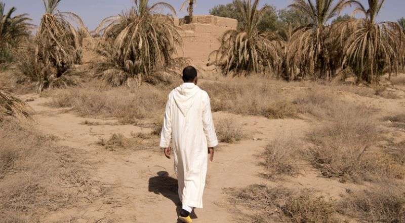 تحذيرات من جفاف سيضرب المغرب