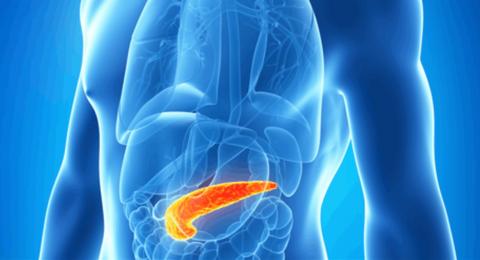 تعرّفوا إلى الأعراض الرئيسية لالتهاب وأمراض البنكرياس