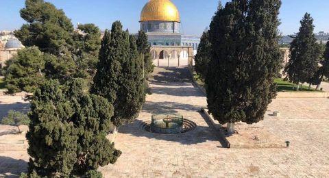 القدس : للجمعة الرابعة اغلاق الأقصى امام المصلين