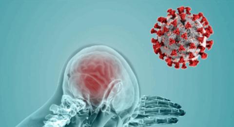 كورونا والدماغ.. تحذير طبي جديد