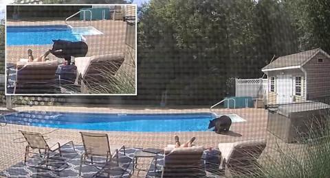 فيديو مخيف.. ضيف مرعب يقترب من رجل نائم