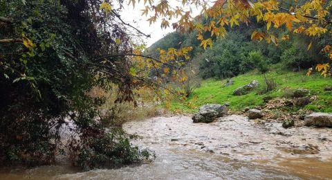 صور جميلة .. وادي القرن بعد الأمطار