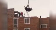 رافعة تحمل بقرة إلى سطح مبنى قيد الإنشاء.. والشرطة تتدخّل