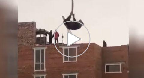 كازاخستان: رافعة تحمل بقرة إلى سطح مبنى قيد الإنشاء.. والشرطة تتدخّل