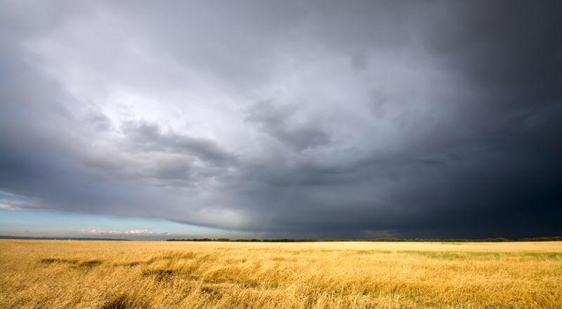الطقس غائم وبارد ومغبر