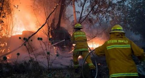 قائد سلطة الاطفاء والانقاذ يصدر أمرًا رسميًا يمنع اشعال النار في المناطق المفتوحة خلال أشهر الصيف في كافة أنحاء البلاد
