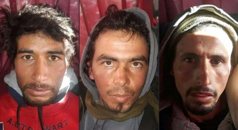 الحكم بإعدام قتلة السائحتين الإسكندنافيتين في المغرب