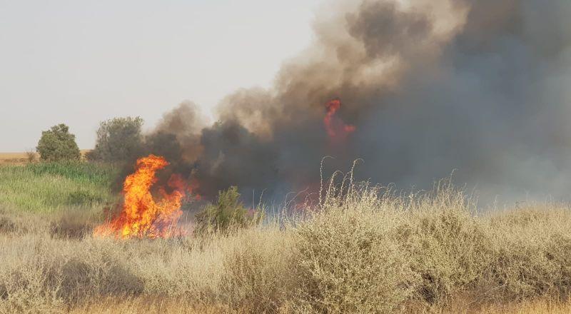 موجة حرائق تجتاح البلاد وسلطة الإطفاء تعلن عن حالة استنفار في صفوفها