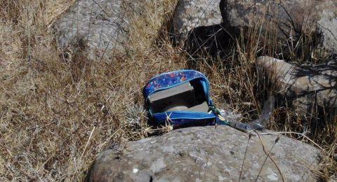 الجيش الاسرائيلي: عثرنا على عبوات ناسفة قرب الحدود في الجولان ونحمل الدولة السورية المسؤولية