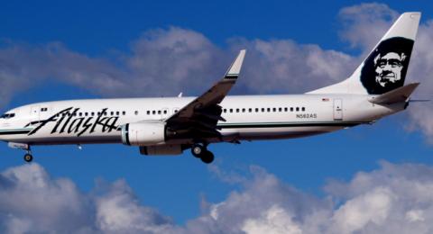 طائرة تصدم دبا في ألاسكا