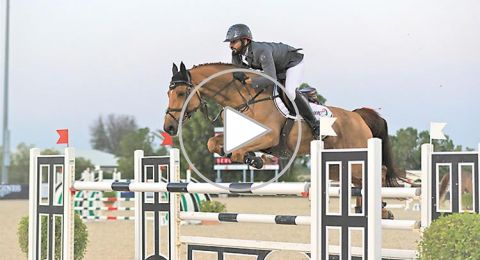 حصان جامح يرمي فارسه على الأرض ويخترق الجمهور