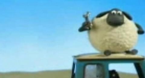 حلقات الخروف شون ذا شيب 9