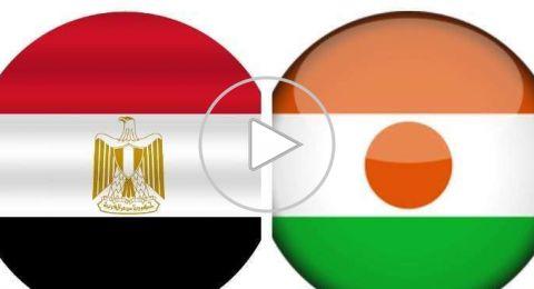 النيجر تحرج مصر والكاميرون تبلغ نهائيات أمم إفريقيا
