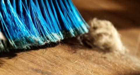 الغبار المنزلي يسبب العقم والسرطان