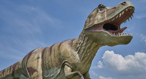 مراهق يحقق اكتشافا مهما للغاية بالعثور على هيكل ديناصور عمره 69 مليون عام