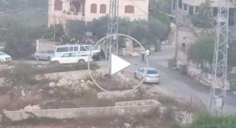 فسوطة: قوات شرطة تستنفر ليلة امس في البلدة للبحث عن رعاة, دخلت ابقارهم مراعي محمية طبيعية