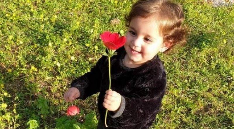 عبلين: مصرع الطفلة شمس غزاوي (3 سنوات) دهسًا