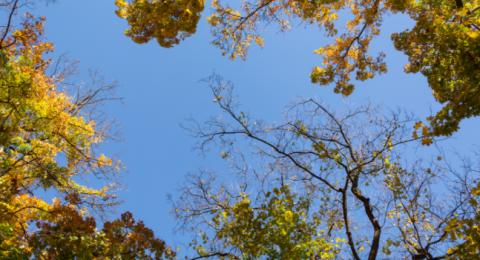 الطقس: انخفاض آخر على الحرارة وأجواء معتدلة حتى نهاية الأسبوع