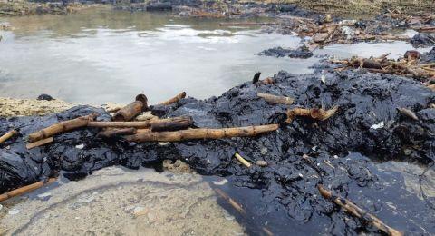 ضربة للصيادين .. بسبب التلوث البحري، الحكومة تمنع تسويق اسماك البحر المتوسط