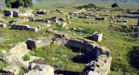 المغرب يفتتح موقع ليكسوس الأثري