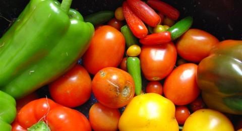 احذر وضع الخضروات في الميكروويف!