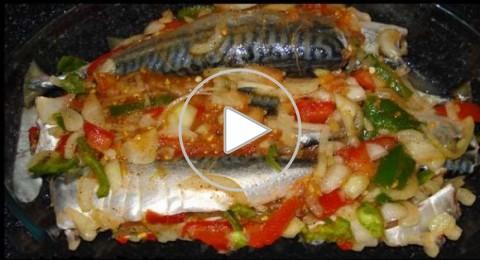 سمك التونة في الفرن للشيف شربيني