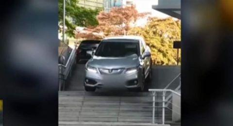 أذهلت الجميع بفعلتها.. قادت سيارتها على الدرج (فيديو)